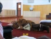德州佛教會2012年弘法活動輯錄